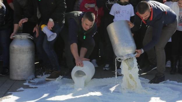 dittaino, protesta latte, Sicilia, Economia
