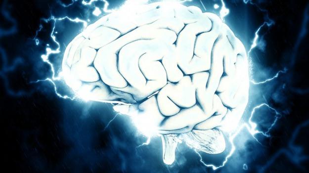 cervello, neuroni, ricerca, Sicilia, Società