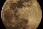 La Superluna di primavera, fotografata da Trieste (fonte: Mauro Messerotti, Osservatorio di Trieste/ INAF)