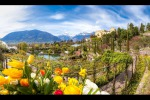 Bolzano, Trento Italy's best places to live - study