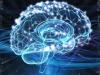 Il cervello ama la musica e la riconosce al volo