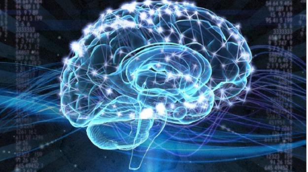 cervello, musica, Maria Chait, Scienza Tecnica