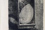 Luigi Bartolini, il segno poetico