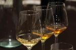 Nel 2018 Italia da record, +29% produzione vino +3,3% export