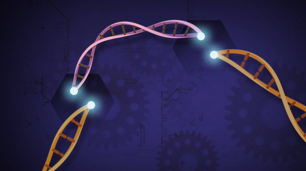dna, Scienza Tecnica