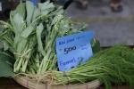 Bio, 63% italiani disposti a spendere fino al 10% in più
