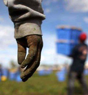 Indennità per falsi braccianti agricoli, truffa milionaria a Ragusa: 293 indagati