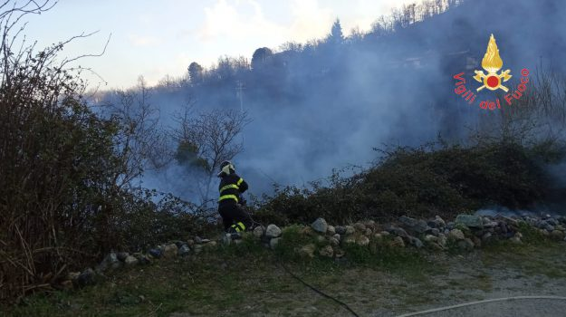 campagna, gimigliano pentone, incendio, Catanzaro, Calabria, Cronaca