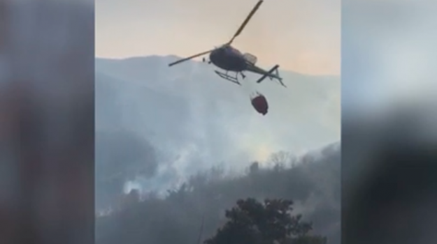 bracconaggio, incendi, Montagne Paola, pascoli abusivi, Cosenza, Calabria, Cronaca