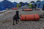 San Ferdinando, pronto lo sgombero della baraccopoli: installate nuove tende per i migranti