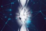 Rappresentazione artistica di una molecola di Dna (fonte: Pxabay)