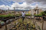 Più che fiori ortaggi, passione per un milione di italiani