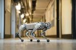 Il più agile dei robot, costruito al Mit (fonte: Bryce Vickmark)