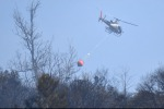 Power cable cause of wildfire near Genoa