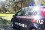 Rubavano ortaggi mentre erano in servizio, arrestati due carabinieri nel Ragusano
