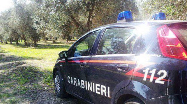 montegiordano, Trattore rubato, Cosenza, Calabria, Cronaca
