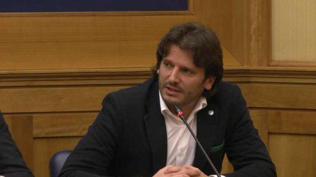 calabria, elezioni regionali calabria, partiti, Cristian Invernizzi, Catanzaro, Calabria, Politica