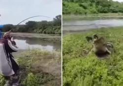 Due amici stanno pescando in un fiume quando spunta un grosso coccodrillo Il rettile insegue i ragazzi per agguantare il pesce. Il filmato dall'Australia - CorriereTV