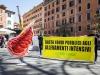 Greenpeace in piazza contro la produzione intensiva di carne