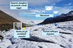 Lo schema rappresenta gli effetti dei pesticidi nei ghiacciai alpini (fonte: Università di Milano Bicocca)