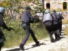 Reggio, nuovo colpo alla famiglia Bagalà: sequestro milionario fra Gioia Tauro e Milano - Video