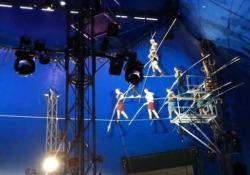 La piramide umana di Nik Wallenda precipita da dieci metri d'altezza Pubblicato il video dell'incidente di due anni fa in un circo americano - CorriereTV