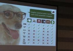 Lo scrub, il servizio per i cani e la App per la Sanità. Ecco il nostro futuro sostenibile Premiati a Tor Vergata a Roma i progetti dei ragazzi della facoltà di Economia - Corriere TV
