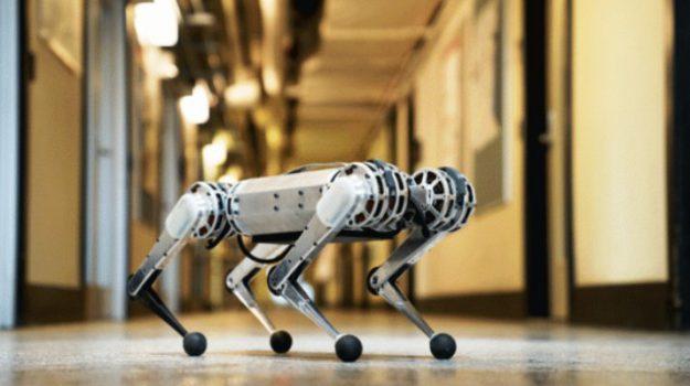 mini ghepardo, robotica, Sicilia, Società