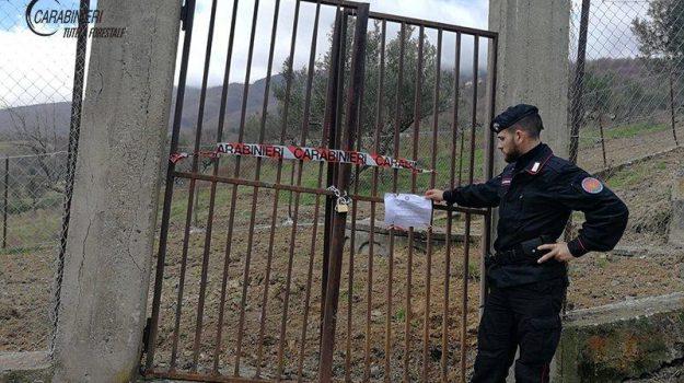 sequestro depuratori montalto, Cosenza, Calabria, Cronaca