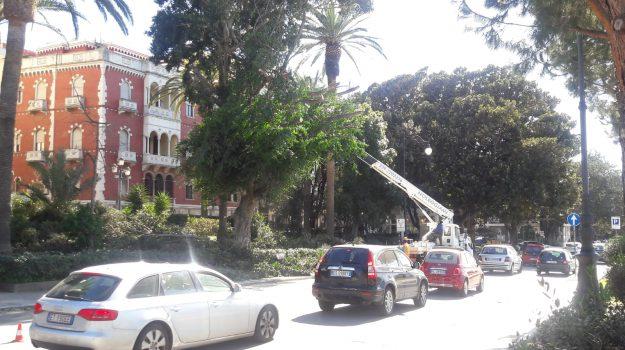manutenzione, reggio calabria, verde pubblico, Reggio, Calabria, Cronaca