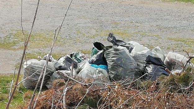 paola, trash challenge, Cosenza, Calabria, Società