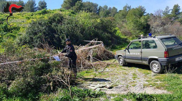 forestale, montegiordano, provincia di cosenza, rifiuti, Cosenza, Calabria, Cronaca