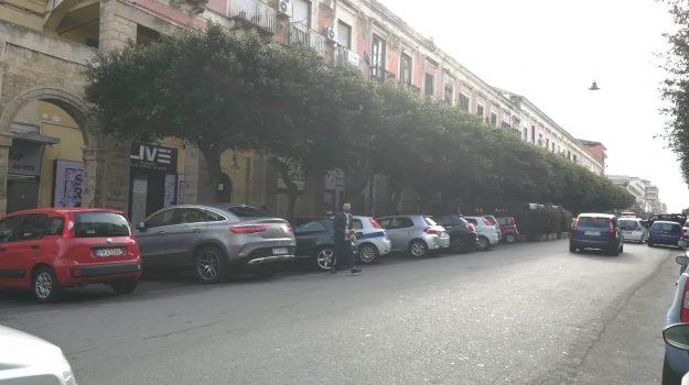omicidio crotone, Stefano D'Arca, Catanzaro, Calabria, Cronaca