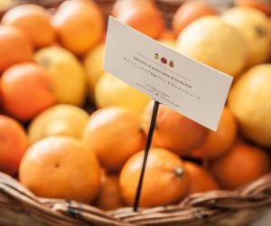 Fra McDonald's e Oranfrizer, patto dell'arancia rossa siciliana