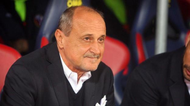 allenatore Palermo, calcio serie b, palermo calcio, Delio Rossi, Rino Foschi, Roberto Stellone, Sicilia, Sport
