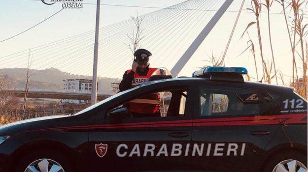 marijuana cosenza, spaccio droga, Cosenza, Calabria, Cronaca