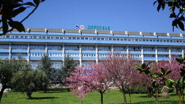 carenza di personale, ospedale di lamezia, Catanzaro, Calabria, Cronaca