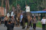 Elezioni in Indonesia, 272 scrutatori muoiono per la fatica