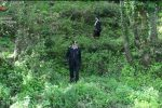 Nonno e nipotine si perdono nel bosco a Barcellona Pozzo di Gotto, ritrovati dai carabinieri