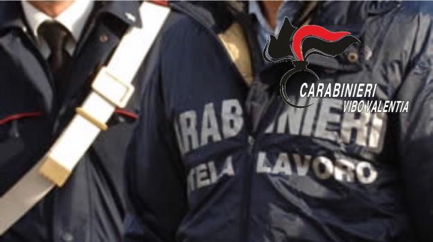 cipolla tropea, lavoro nero, ricadi, Catanzaro, Calabria, Cronaca