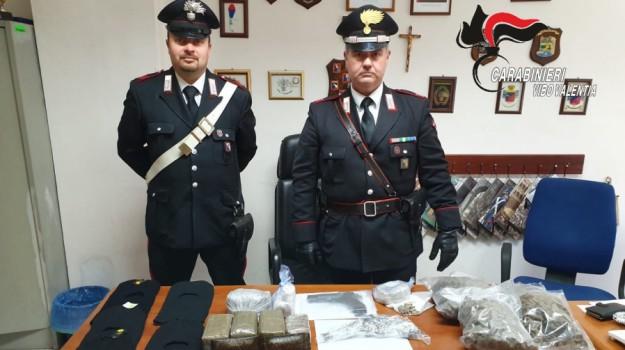 san gregorio d'ippona, sequestro droga, Catanzaro, Calabria, Cronaca