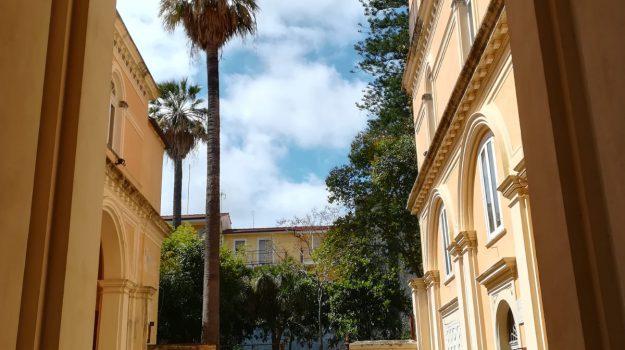 comune, cultura, lamezia, Andreina Cimmino, Vittoria Paonessa, Catanzaro, Calabria, Cultura
