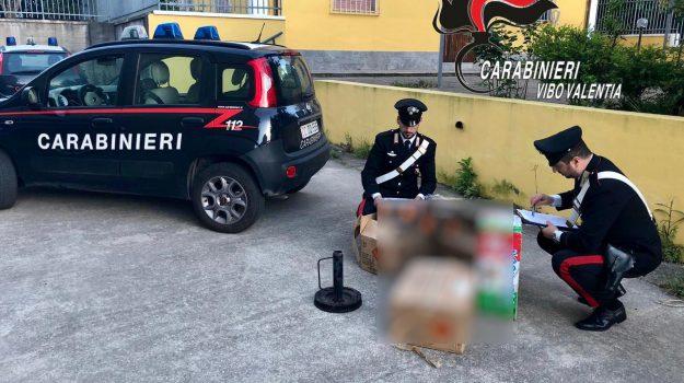 fuochi d'artificio illegali, mileto, Catanzaro, Calabria, Cronaca