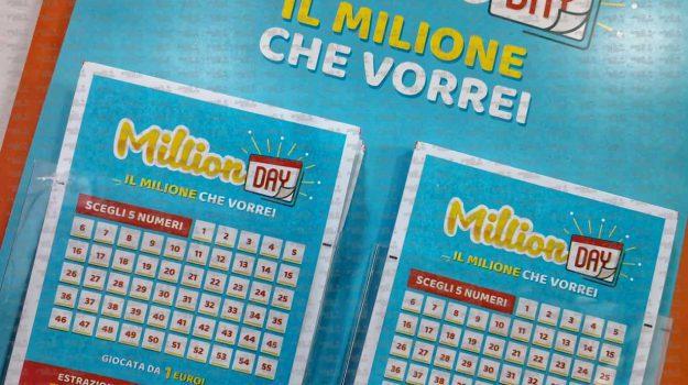 million day, san luca, Reggio, Calabria, Cronaca