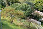 Cresce la domanda turistica nei parchi naturali in Italia