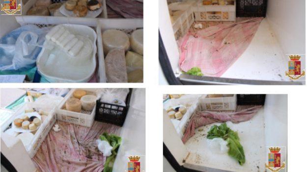 sequestro formaggi soverato, Catanzaro, Calabria, Cronaca