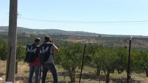 caporalato, confisca dia, Rosario Di Perna, Sicilia, Cronaca