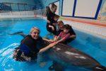 Delfino terapia per chi soffre, la sperimentazione dei medici messinesi: il video