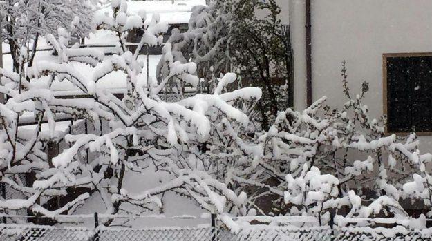 coldiretti, freddo e vento, maltempo, neve al Nord, vortice polare, Sicilia, Meteo