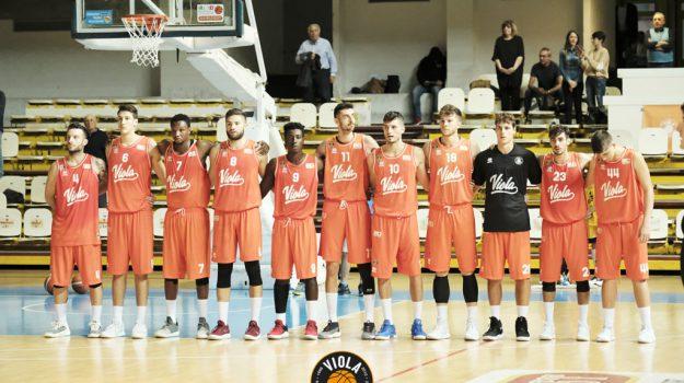 basket, viola reggio calabria, Reggio, Calabria, Sport
